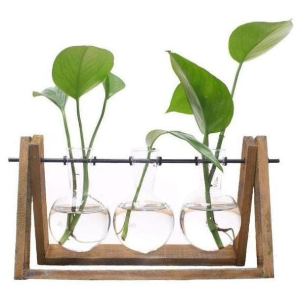 Glass Hydroponic Table Planter
