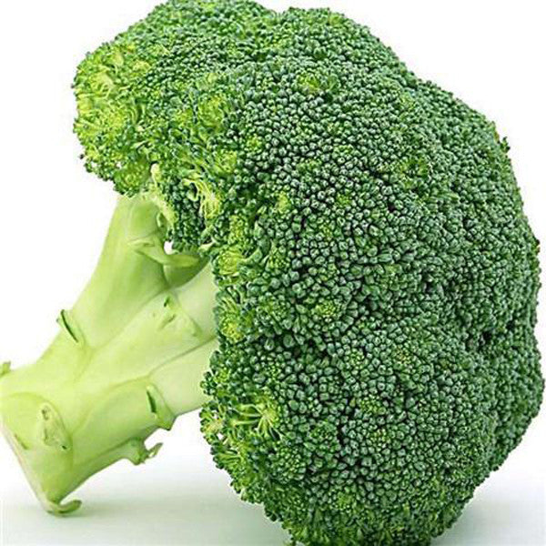 Broccoli Seeds (20 seeds)