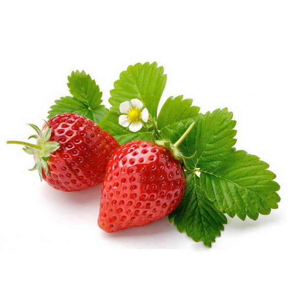 Rare Magical Pink Strawberry Seeds