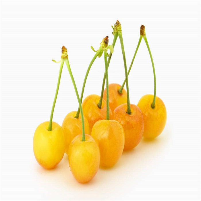 Asian Cherry Fruit Seeds