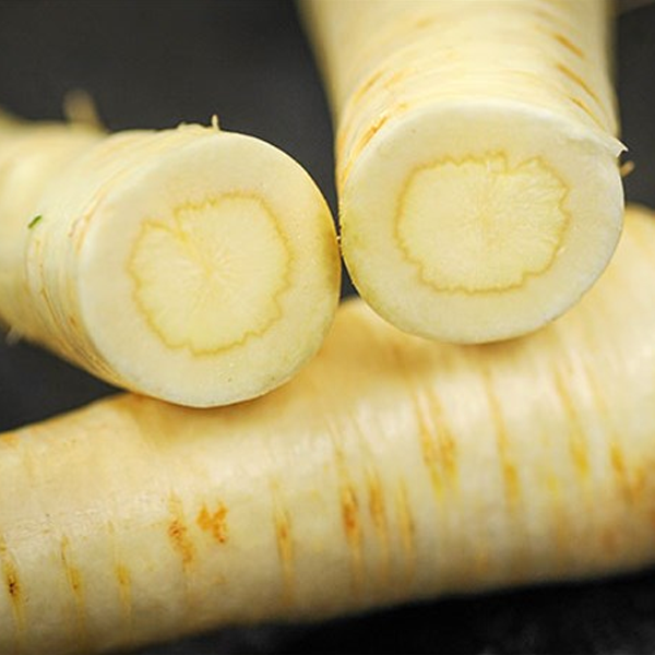 White Gem Parsnip Seeds