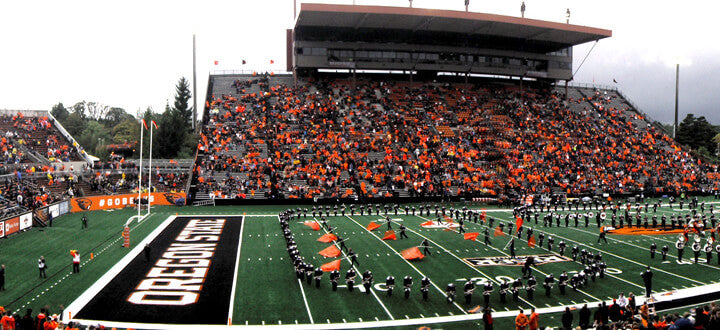 Fans of Oregon State Beavers Watches Athletics