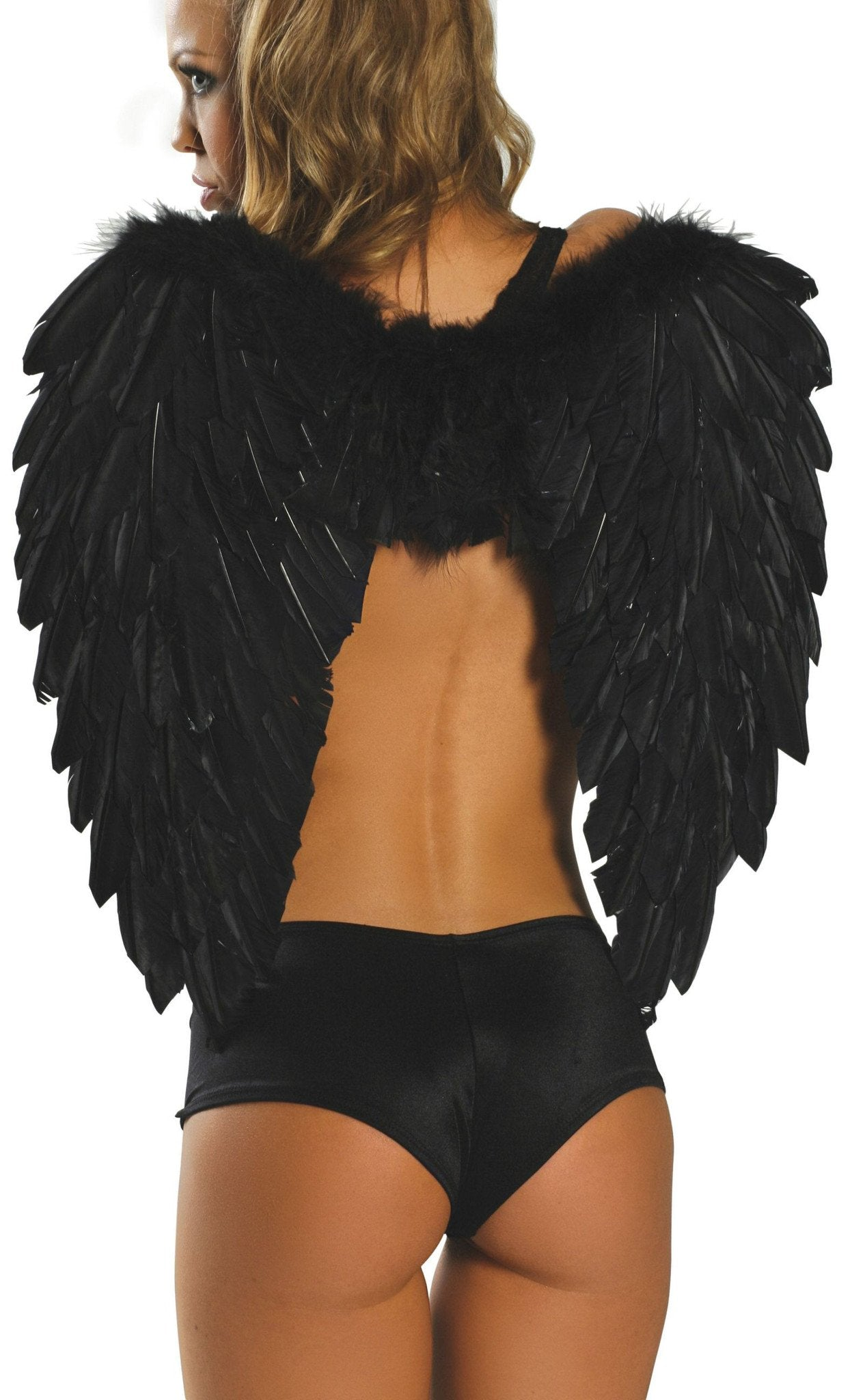 Buy Feathered Wings from Rave Fix for $29.99 with Same Day Shipping Designed by Roma Costume 1361-Blk-O/S