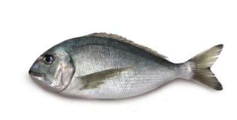 Whole Sea Bream