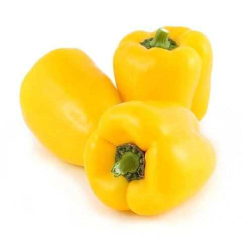 Mini Yellow Capsicum