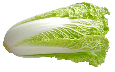 From China Vegetables Chinese Cabbage