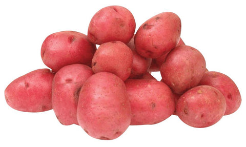 "Buy Red Baby ""Chat"" Potato 