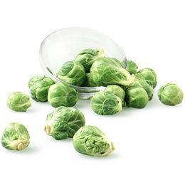 From Holland Vegetables Brussel Sprout