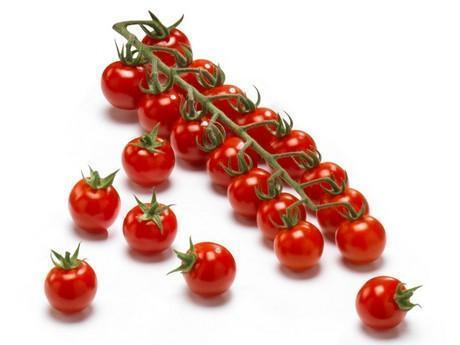 Buy Cherry Tomatoes in vine | QualityFood.ae|Vegetables |From Holland Online food delivery Dubai Abu Dhabi and Sharjah