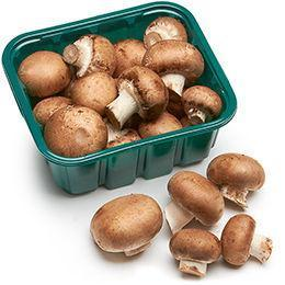 Buy Organic Brown Mushroom | QualityFood.ae|Vegetables |From Holland Online food delivery Dubai Abu Dhabi and Sharjah