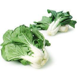 From Holland Vegetables Paksoy - Bok Choy