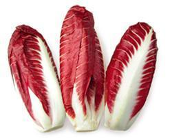 Buy Red Chicory | QualityFood.ae|Vegetables |From Holland Online food delivery Dubai Abu Dhabi and Sharjah