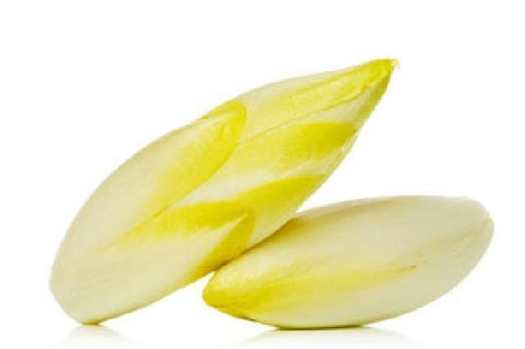 "From Holland Vegetables White Chicory ""Endive"""