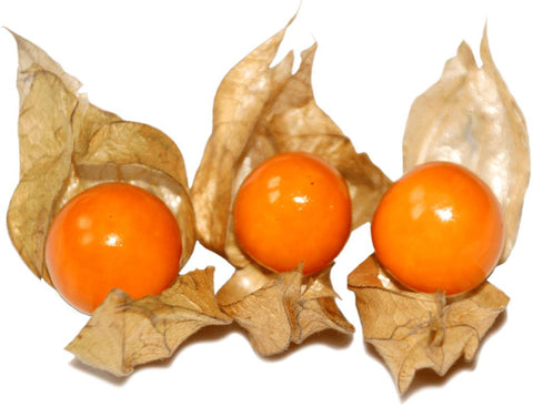 From India Fruits Physalis