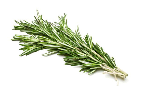 From Italy Vegetables Organic Rosemary