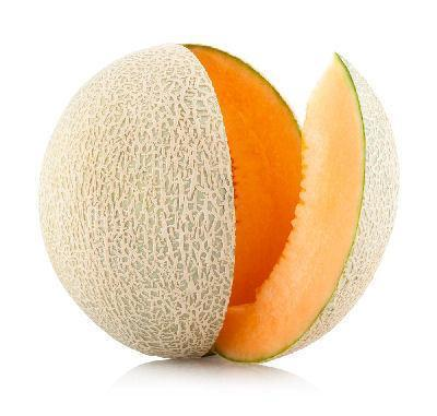 From Oman Fruits Rock Melon