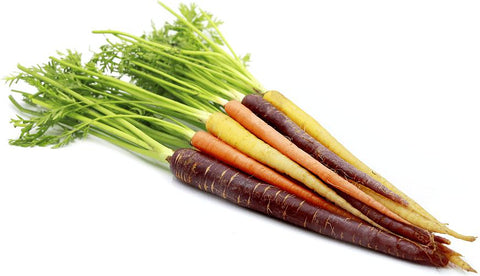From South Africa Vegetables Rainbow Baby Carrot