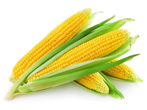 From Spain Vegetables Sweet corn