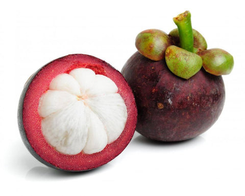 From Thailand Fruits Mangosteen