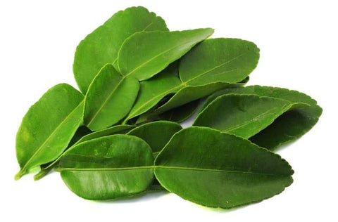 From Thailand Vegetables Lime leaves