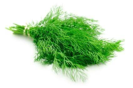 From UAE Vegetables Dill