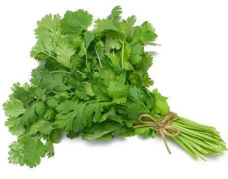 From UAE Vegetables Organic Coriander Leaves