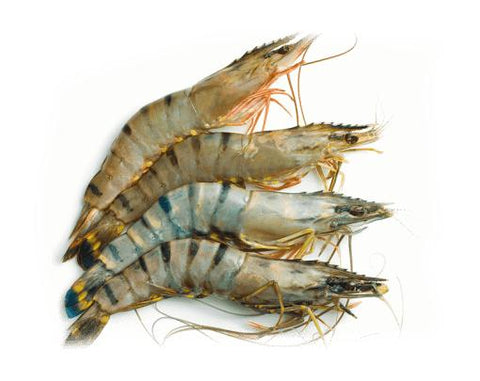 "From Vietnam Seafood Black Tiger Shrimp, Easy-Peel Shell ""Jumbo"""