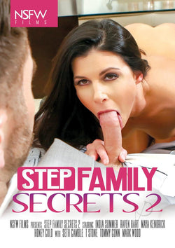 Stepfamily Secrets 2