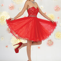 Strapless Floral Embroidered Tulle Dress