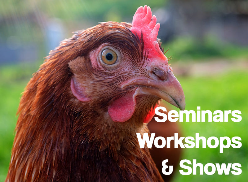 Spring Events and Workshops