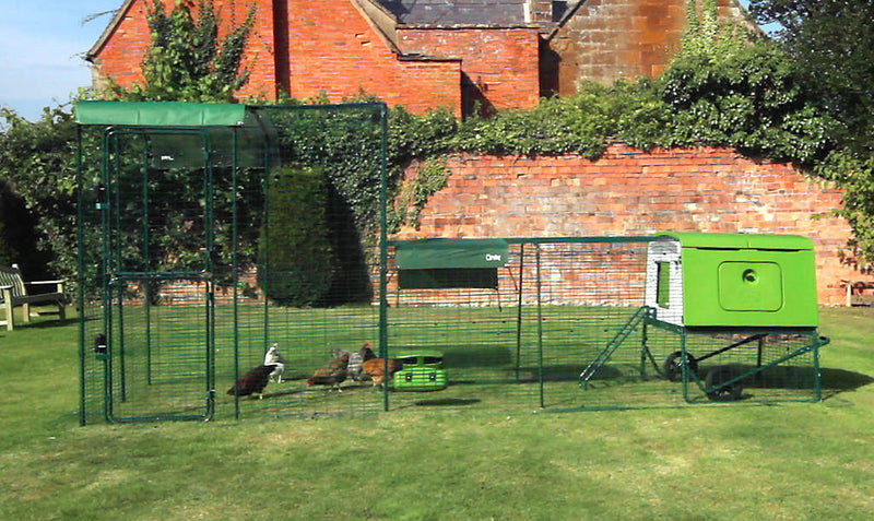 Eglu Cube MK2 with Run Connection Kit for Walk In Chicken Run
