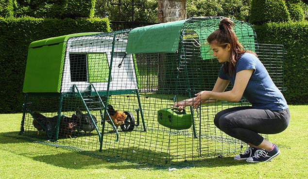 Omlet Eglu Cube Chicken Coop Free Shipping