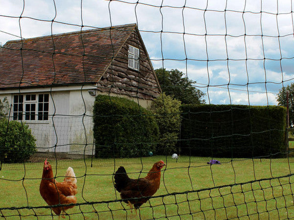 Omlet Chicken Fencing - Gate Kit