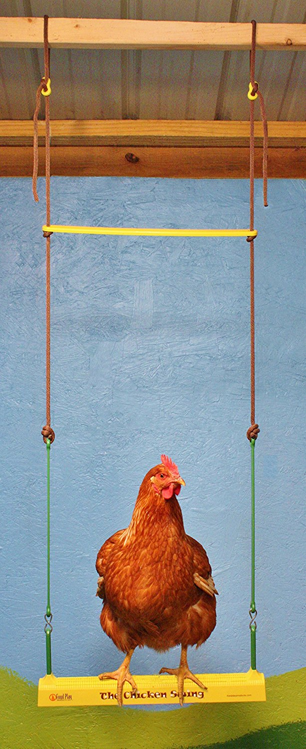 The Chicken Swing