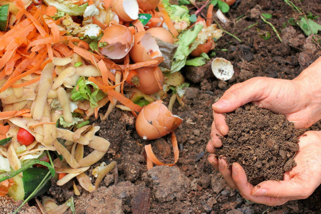 Composting: where there's a will, there's a way