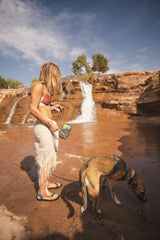 Woman and dog by waterfall