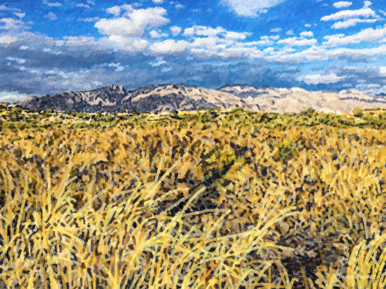 Catalina Mountains with Rillito in Foreground - Original Limited Edition Landscape Painting