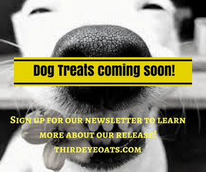 Third Eye Dog Bakery - Coming Soon!