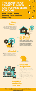 Infographic - How To Use Canned Pumpkin For a Healthy, Happy Dog