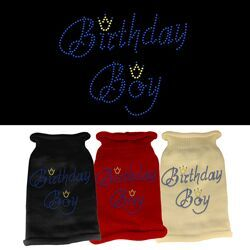 Rhinestone Knit Dog Sweater - Birthday Boy