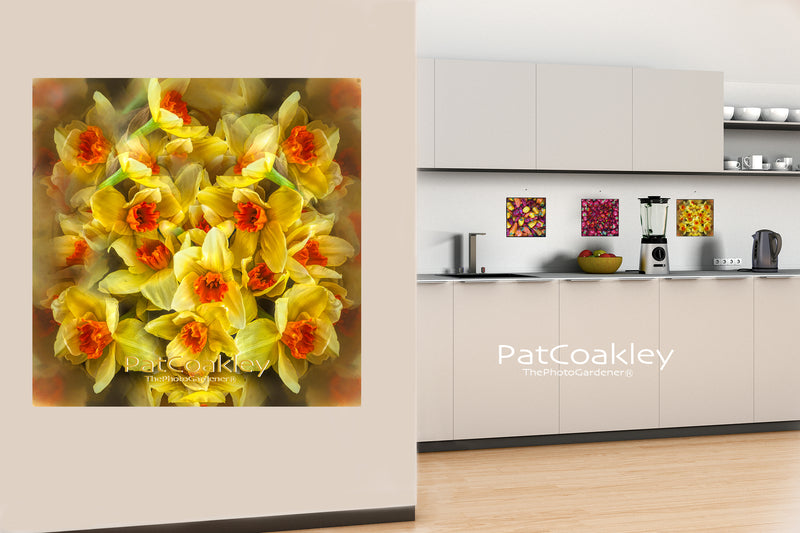 Fine Art Metal Print | Yellow Daffodils| Narcissus| Kitchen and Dining Decor| ThePhotoGardener