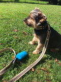 Cabana Brown Leash