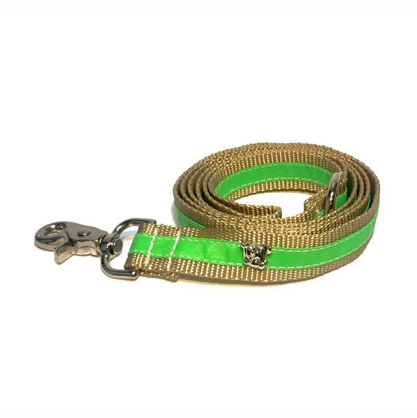 Cabana Lime Leash