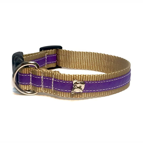Cabana Purple Collar