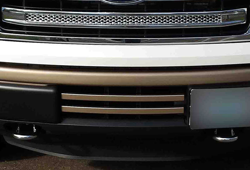 2009-2014 F150 2-Bar Lower Grille / Pale Adobe