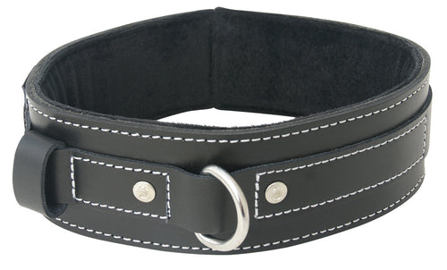Lined Leather Collar