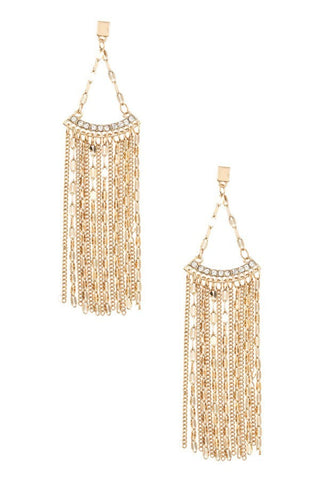 Absolutely Amazing Dangle Earrings