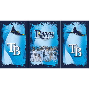Tampa Bay Rays Fridge, Tampa Bay Rays Beer Fridge, Tampa Bay Rays Mini Fridge, Tampa Bay Rays Fridge Decals, Custom Fridge Wraps, Fridge Decals