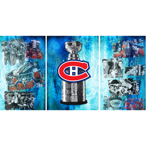 Montreal Canadiens Stanley Cup Fridge