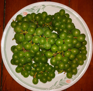 Mile Square Farm Organic Grapes - 1 lb.
